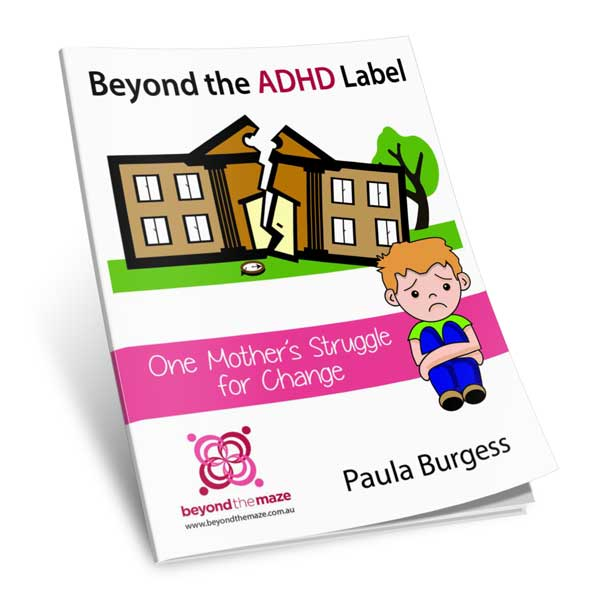 Beyond the ADHD label by Paula Burgess